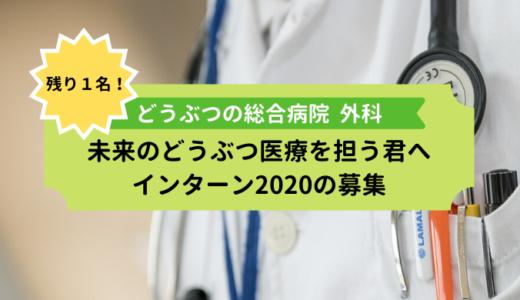 残り1名のみ!外科・麻酔科学生インターン2020の募集